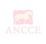 ancce_225x300
